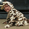 Photo #5 - Cutest Little Cow