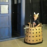 Photo #1 - Attacking the Tardis
