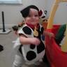Photo #3 - Dalmatian