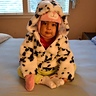 Photo #2 - Dalmatian puppy