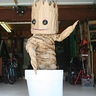 Photo #3 - Dancing Baby Groot