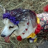 Photo #2 - Pippi-Anna the Corgi's Day of the Dead Costume.
