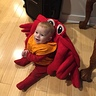 Photo #6 - Matthew the King Crab