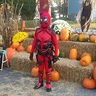 Photo #3 - Deadpool