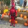 Photo #3 - Deadpool