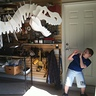 Photo #5 - Dino the T-Rex