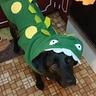 Photo #3 - Dinosaur