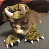 Photo #1 - Dinosaur Cat