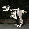 Photo #1 - Dinosaur Fossil