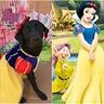 Photo #4 - Padmé as Snow White