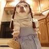 Photo #1 - Dogothy - 1