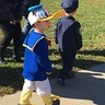 Photo #2 - Donald Duck