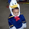 Photo #2 - Donald Duck