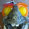 Photo #6 - Making of Dory- Step 2: Paper Mache