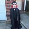 Photo #3 - Dracula