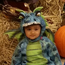 Photo #3 - 'Scary dragon' taking a break in a 'pumpkin patch'