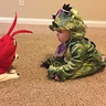 Photo #1 - Dragon baby and his lobster cat