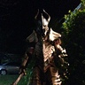 Photo #6 - Dragonbone Armor