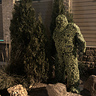 Photo #3 - Topiary costume