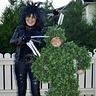 Photo #1 - Edward Scissorhands, Bush and Hairdo (or Hairdon't)