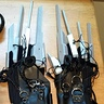 Photo #3 - Edwardia Scissorhands