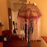 Photo #1 - Electric Jellyfish
