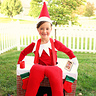 Photo #1 - Elf on the Shelf