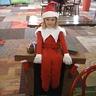 Photo #1 - Elf on the Shelf