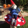 Photo #1 - Elias the Gnome Rests on a Mushroom
