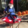 Photo #3 - Elias the Gnome Rests on a Mushroom