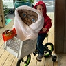 Photo #1 - Elliott and ET going trick or treating