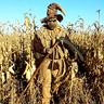 Photo #1 - Evil Scarecrow