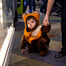 Photo #1 - Ewok Toddler stops for a rest.