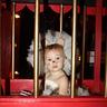 Photo #2 - Lion Cage