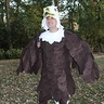 Photo #4 - Bald eagle