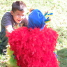 Photo #2 - The back of the parrot costume