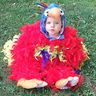 Photo #3 - More of the parrot costume