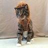 Photo #3 - Chewbacca