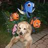 Photo #1 - Velkry posing at the front door