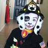 Photo #1 - Paw Patrol Marshal the Fire Pup costume