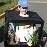 Photo #1 - Fish Tank