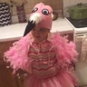 Photo #1 - Addy the flamingo