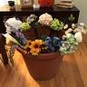 Photo #2 - Flower Pot & Gnome