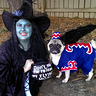 Photo #4 - Wicked Witch and Flying Monkey