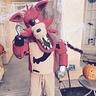 Photo #1 - Hi.  I'm Foxy!