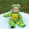 Photo #1 - Frog