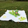 Photo #5 - Frog