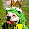 Photo #1 - Kiss Me!