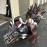 Photo #1 - Game of Thrones Dragon and Baby John Snow