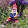 Photo #1 - Garden Gnome